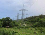 Висадка дерев та інших багаторічних насаджень в  охоронних  зонах  повітряних і кабельних ліній