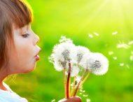 Аллергия: остановить до начала!