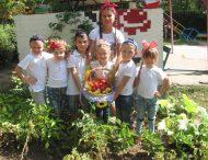Діти з садочку № 47 зібрали власний урожай