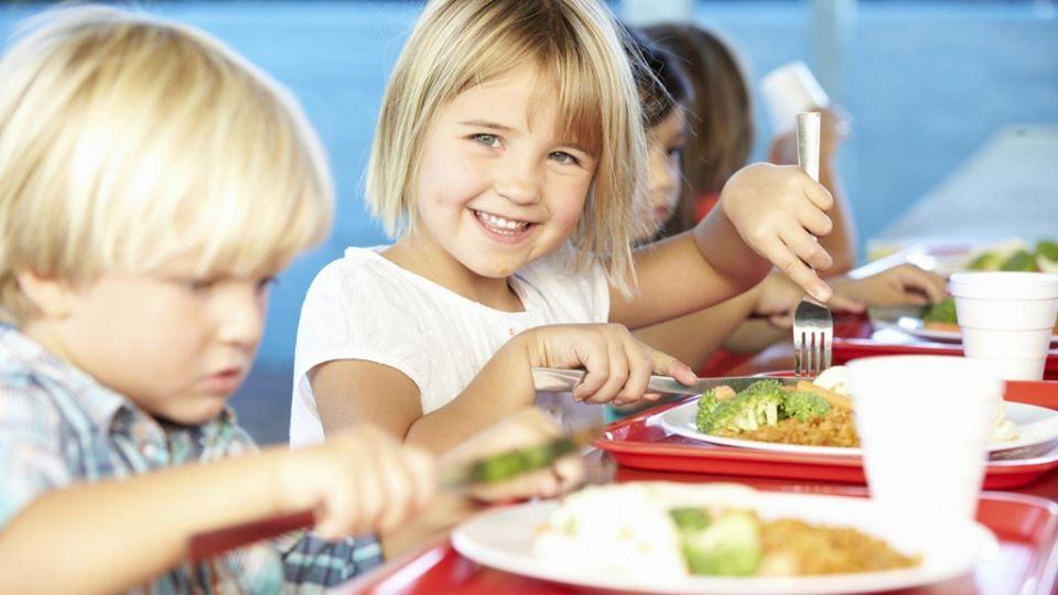 У Нікополі шукають  підрядника для організації  харчування дітям за понад 26 мільйонів