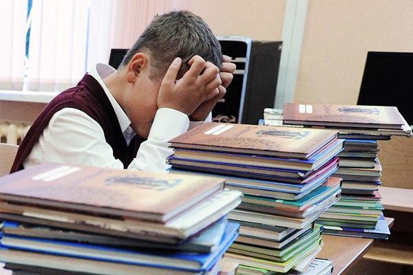 Реформа образования: Новосад назвала плюсы 12-летней школы