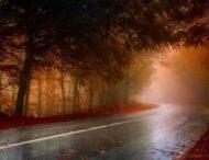 Туман не полишає Дніпропетровську область