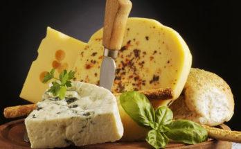 Ценность сыра для человека.