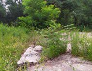 «Печалька» парка Металлургов…