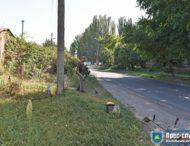 На кварталах Нікополя косарі працюють згідно з графіком.