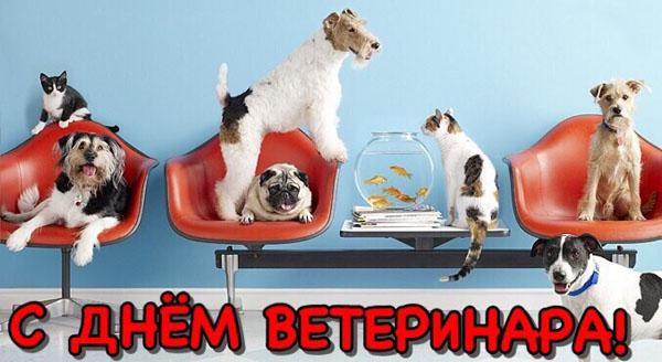 День работников ветеринарной медицины