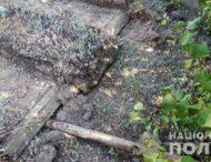 На Дніпропетровщині зруйнували могили (Фото)
