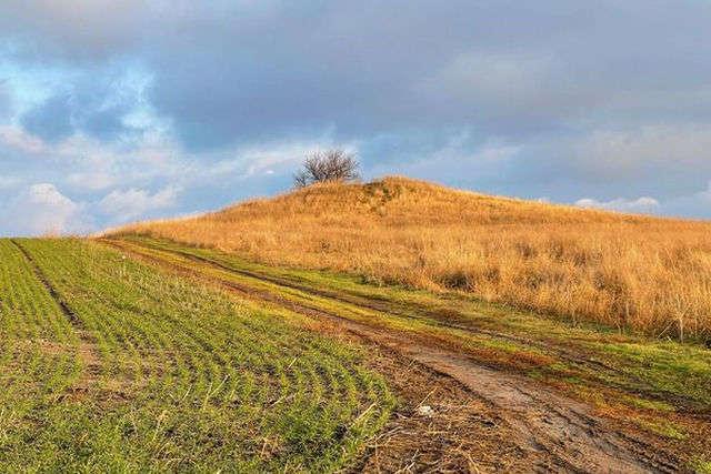 На Днепропетровщине продолжают раскапывать и грабить древние курганы (фото)