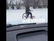 В Киеве замечены велосанки