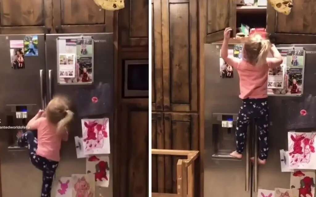 Девочка показала чудеса ловкости в борьбе за вкусняшки