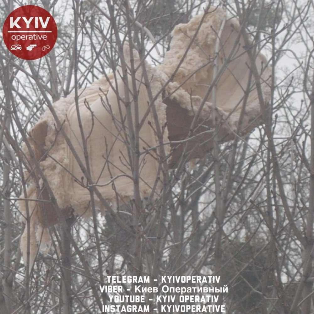 В Киеве на дереве застрял диван