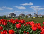 Підготовка до партнерської перевірки ВАО АЕС на Запорізькій АЕС триває