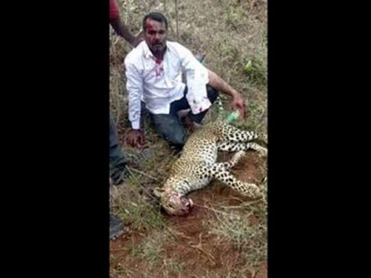 Индиец убил голыми руками напавшего на семью леопарда