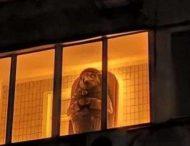 «Саркофаг со скульптурой древнеегипетского бога» заметили на балконе многоэтажки