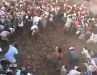 Тысячи крестьян собрались побросаться коровьим дерьмом