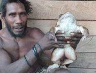 Мужчина поймал и съел килограммовую лягушку