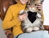 Украинка создает невероятные рюкзаки-коты