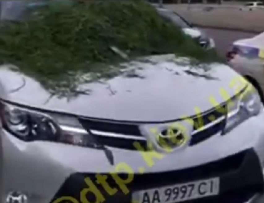Герою парковки «озеленили» авто