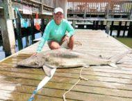 Учительница поймала рекордную акулу
