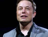 Илон Маск забавно «подколол» гендиректора Apple Тима Кука
